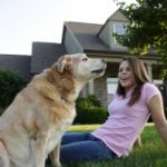 Pet Insurance Pros and Cons